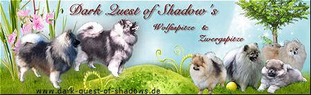 Dark Quest of Shadows